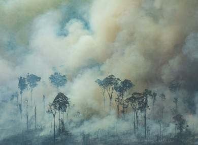 Smoke rises from the Brazilian rainforest (file photo)