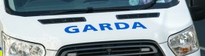 Garda injured in hit and run in Louth