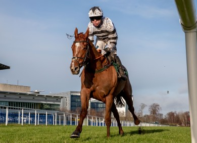 French Aseel in action at Leopardstown last month.