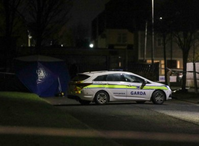 Garda Forensics at the scene