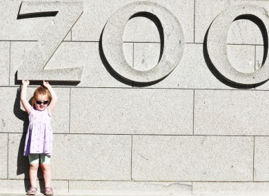 Three-year-old Riona Hehir  from Beaumout at the opening of Dublin Zoo last June.
