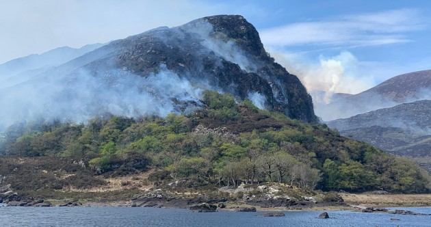 Public urged to stay away as large wildfire continues to burn in Killarney National Park
