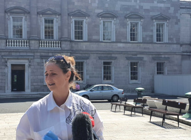 Boylan on the Plinth at Leinster House today.
