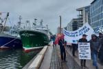 Fishermen on St John Rogerson Quay in Dublin this morning