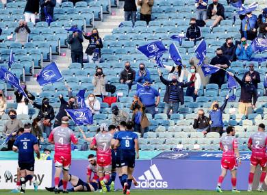 Leinster fans celebrate Ryan Baird's try.