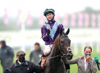 Oisin Murphy and Alcohol Free.