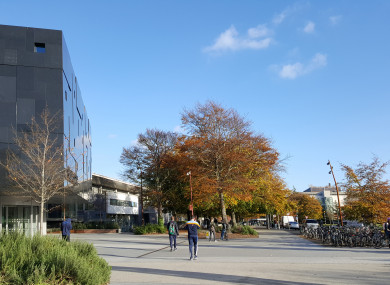 The accommodation is planned near UCD
