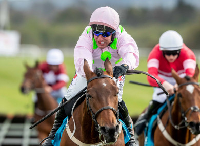 Saldier runs in the Galway Hurdle on Thursday.
