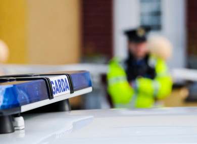 File photo of a Garda car and officer