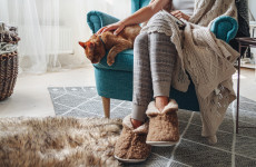 'The benefits are massive': How to keep your house cosy this autumn, according to an expert